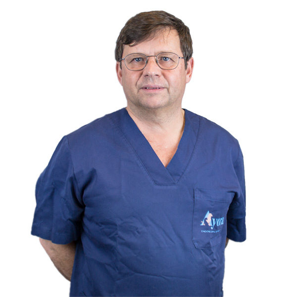 Veterinario en Ayora Endoscopia veterinaria